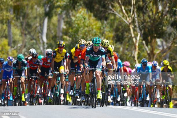 The peloton rides through the Barossa Valley on the first day of the Tour Down Under cycling race in Adelaide on January 16 2018 / AFP PHOTO /...