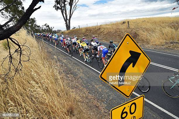 TOPSHOT The peloton winds its way through the Adelaide hills during stage 1 of the Tour Down Under cycling race from Prospect to Lyndoch in Adelaide...