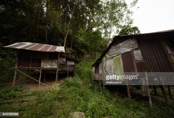 the penan hut reflects the simplicity of the penan tribe that lives in the forest of sarawak. normally, its made from timber, rattan, leaf and bamboo from the forest. - shaifulzamri imagens e fotografias de stock