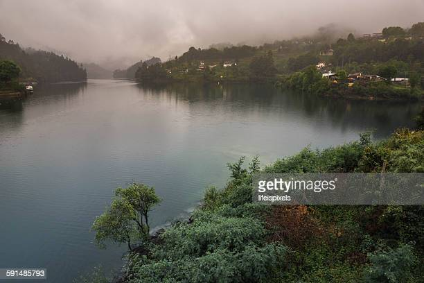 the peneda-gerês national park - lifeispixels stock pictures, royalty-free photos & images