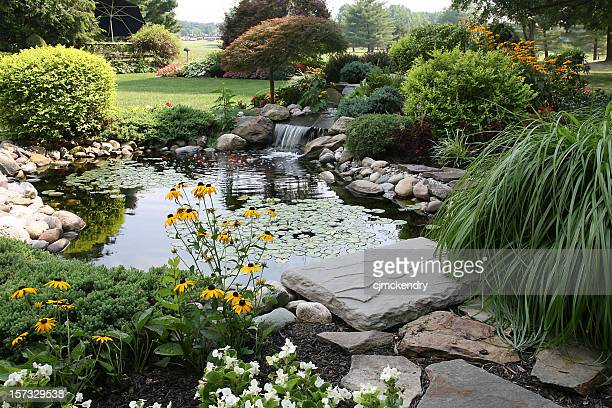 the perfect backyard - landscaped stock pictures, royalty-free photos & images