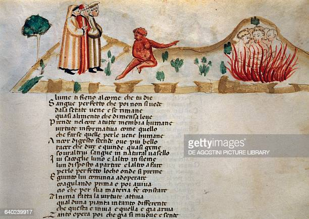 The perfect blood which never is drunk up Into the thirsty veins Canto XXV Purgatory Divine Comedy by Dante Alighieri illuminated page from the Dante...