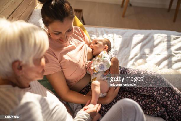 the perfect time nurture and connect - woman breastfeeding animals stock photos and pictures