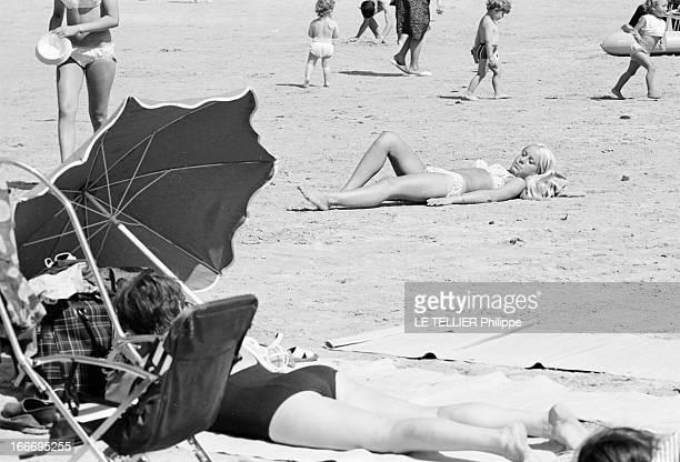 The Perros Guirrec Beach In Britain Cleaned After The Accident Of The 'Torrey Canyon'. En France, juillet 1967, moins quatre mois après la marée...