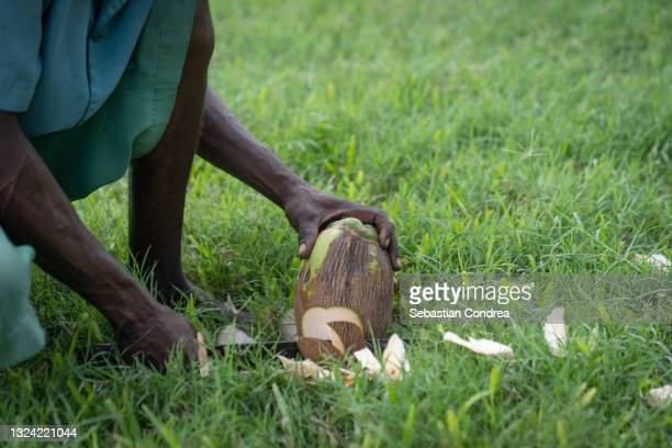 the person of african, who prepares a coconut, outside near the palm tree. - kenya stock pictures, royalty-free photos & images
