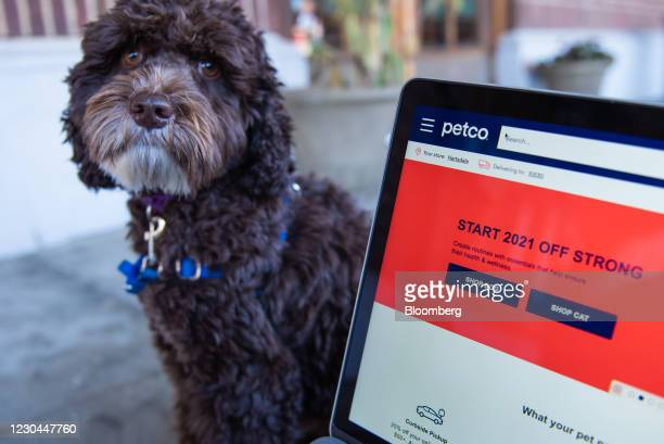 The Petco website on a laptop computer arranged in Hastings-on-Hudson, New York, U.S., on Monday, Jan. 4, 2021 A booming market for U.S. Initial...