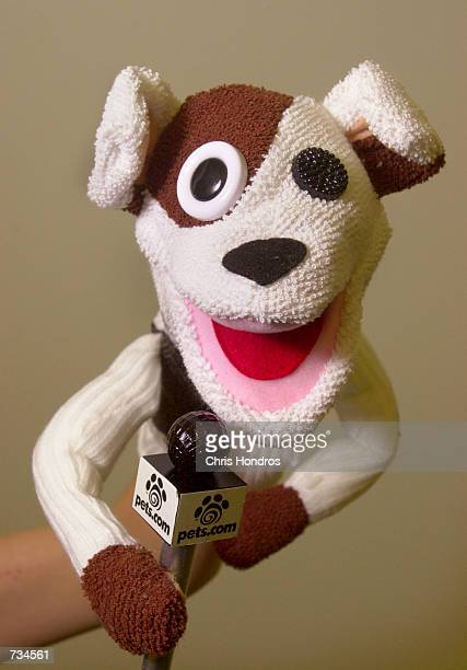 The Petscom sock puppet The San Franciscobased pet products company known for its commercials with the sockpuppet dog and the slogan Because pets...