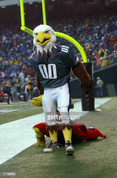 The Philadelphia Eagles mascot entertains the crowd during the game against the Arizona Cardinals on November 17 2002 at Veterans Stadium in...