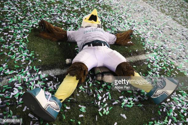 The Philadelphia Eagles mascot makes a snow angel in the confetti after the Philadelphia Eagles defeated the Minnesota Vikings in the NFC...