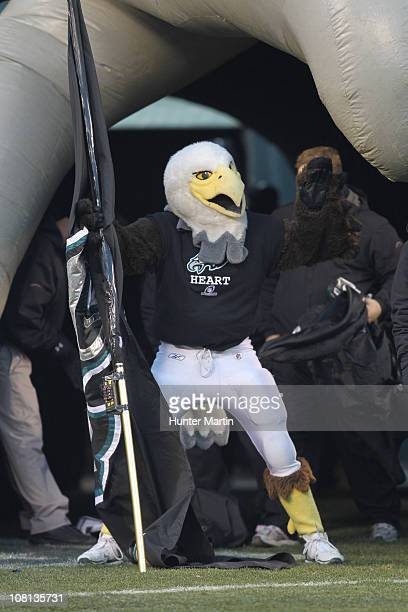 The Philadelphia Eagles mascot Swoop performs before a wildcard playoff game against the Green Bay Packers at Lincoln Financial Field on January 9...