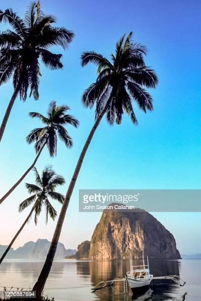the philippines, tropical island in palawan - paisajes de filipinas fotografías e imágenes de stock