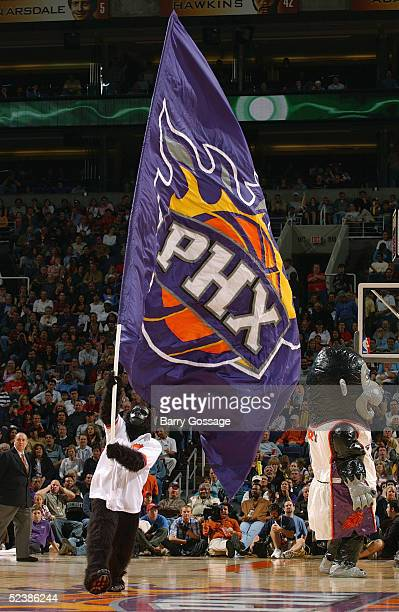 The Phoenix Suns Gorilla waves a giants Suns flag during the game against the New York Knicks on February 5 2005 at America West Arena in Phoenix...