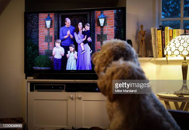 The photographer's dogs Arthur and Ralph watch Prince William Duke of Cambridge Catherine Duchess of Cambridge Prince George of Cambridge Princess...