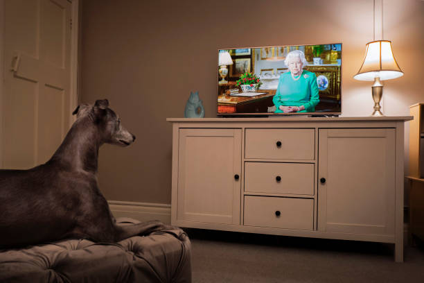 GBR: Her Majesty The Queen Addresses The Nation