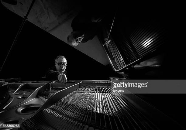 The piano tuner
