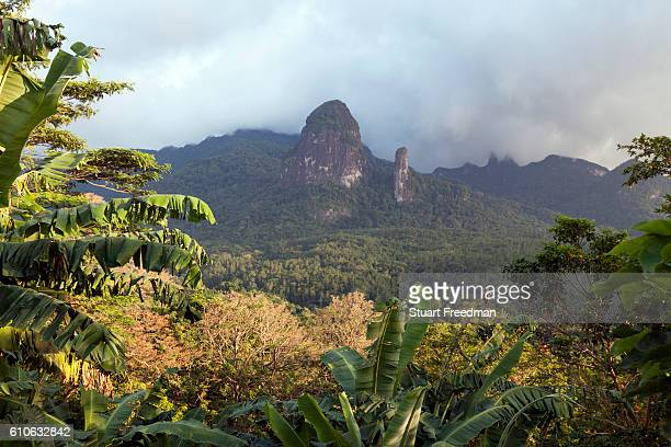 The Pico de Príncipe and the Pico Cão Grande the two highest mountains on the island Principe Sao Tome and Principe Sao Tome and Principe are two...