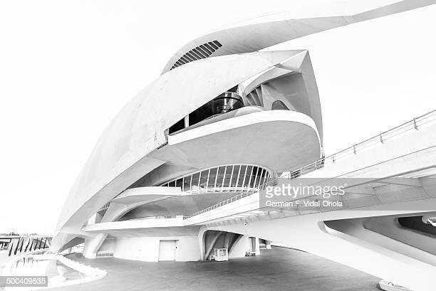 CONTENT] The picture shows the Palau de les Arts Reina Sofia the Opera house of Valencia designed by Santiago Calatrava