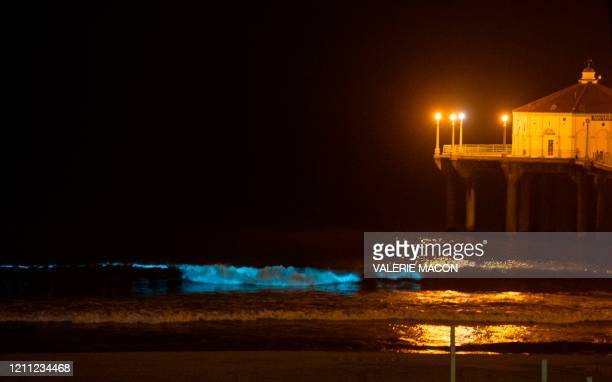 The Pier is seen as bioluminescent waves crash on the sand shining with a blue glow on April 28 in Manhattan Beach California Bioluminescence is a...