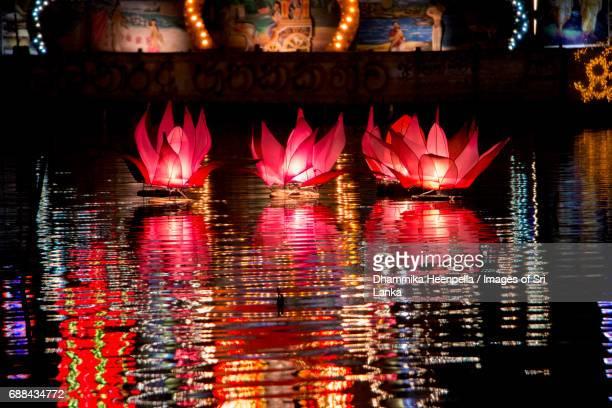 the pink floating lotus lanterns of vesak - buddha's birthday stock pictures, royalty-free photos & images