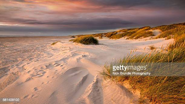the pink hour - denmark stock pictures, royalty-free photos & images