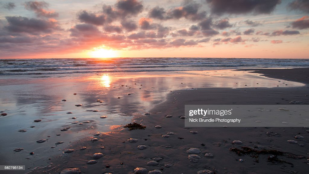 The Pink Hour : Stock Photo