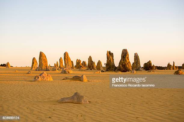 the pinnacles desert, western australia - pináculo campanário - fotografias e filmes do acervo
