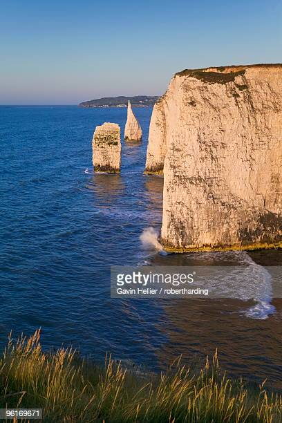 the pinnacles, studland, isle of purbeck, dorset, england, united kingdom, europe - gavin hellier stock pictures, royalty-free photos & images