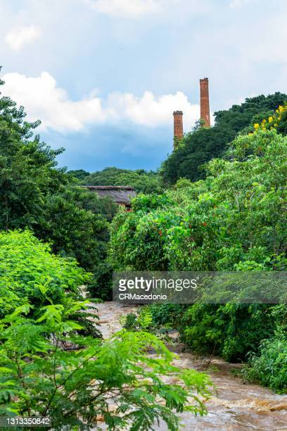 the piracicaba river flows through abundant nature, towards historical constructions. - crmacedonio bildbanksfoton och bilder
