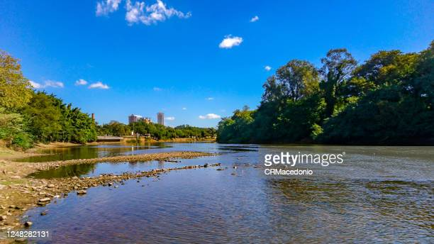 the piracicaba river in a dry season, under blue sky between clouds. - crmacedonio stock pictures, royalty-free photos & images