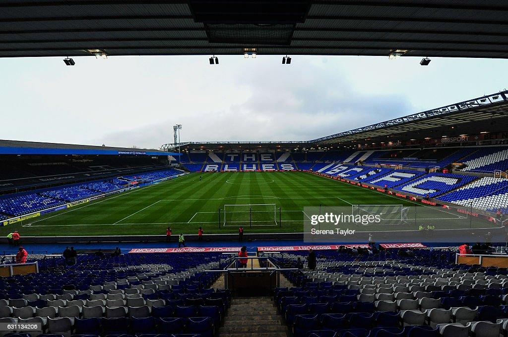 Birmingham City v Newcastle United - The Emirates FA Cup Third Round : News Photo