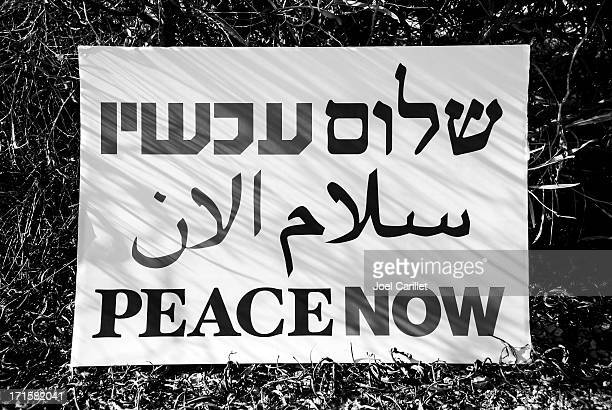 peace now sign in hebrew, arabic, and english - arabic script stock pictures, royalty-free photos & images