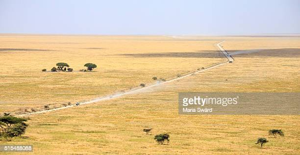 'The place where the land runs on forever' - Serengeti national park, Tanzania