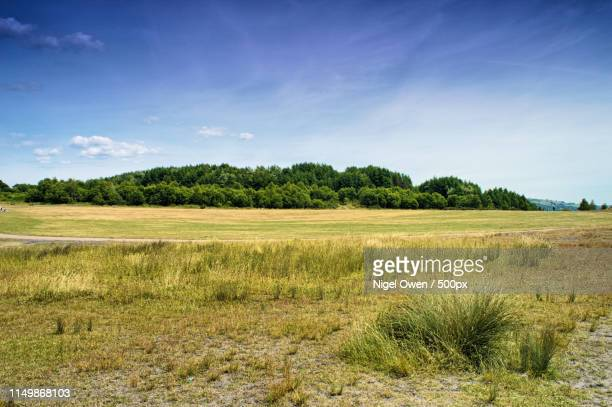 the plain - nigel owen stock pictures, royalty-free photos & images
