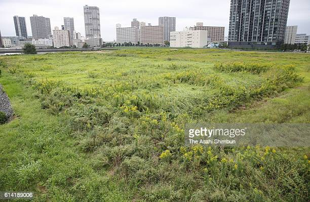 The planned construction site for the Ariake Arena volleyball venue of the Tokyo Olympics is seen on October 5 2016 in Tokyo Japan