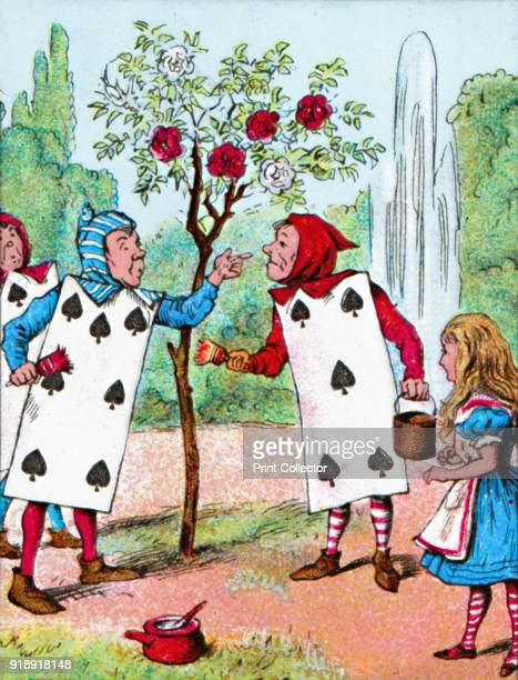 'The Playing cards painting the Rose Bushes' c1910 From Alice in Wonderland by Lewis Carroll [W Butcher Sons London c1910]Artist John Tenniel
