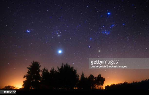 The Pleiades, Taurus and Orion with Jupiter as a guest, Doyle, Argentina.