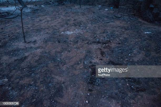 The point where 26 charred bodies were found following a deadly forest fire in Mati a northeast suburb of Athens Greece 25 July 2018