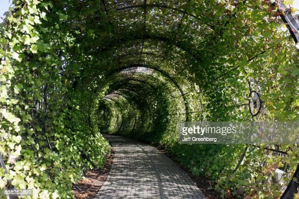 The Poison Garden tunnel at Alnwick Garden.