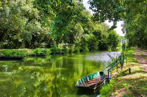 the Poitevin marsh 1205909523
