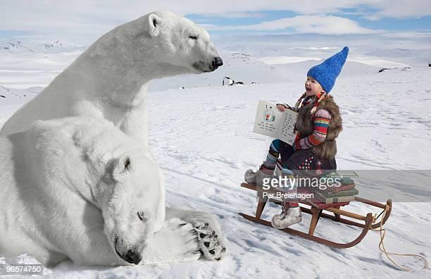 the polar bear teacher