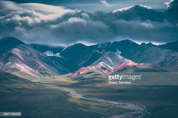 the polychrome pass in denali national park, alaska - paisajes de alaska fotografías e imágenes de stock