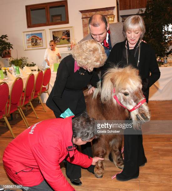 The pony treads on the foot of singer Bibi Johns Dieter Ehrengruber and Heidelinde Weis during the prebirthday party of Bibi Johns My last day 89 at...