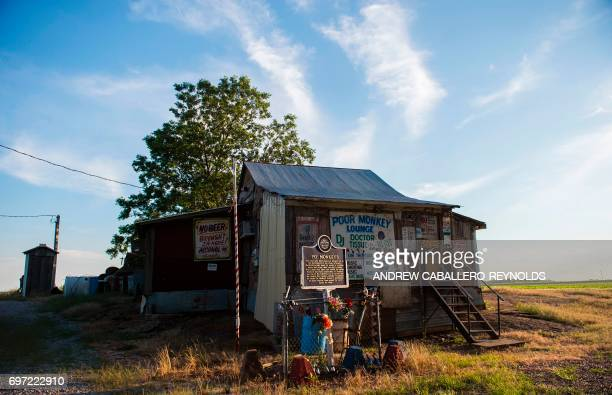The Poor Monkey lounge is seen in Cleveland Mississippi on June 8 2017 Po' Monkey's lounge is a juke joint located in cotton fields in a oneroom...