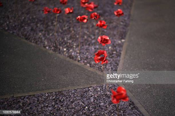 The poppy sculpture Wave which marks the centenary of World War One adorns the exterior of the Imperial War Museum North on September 07 2018 in...