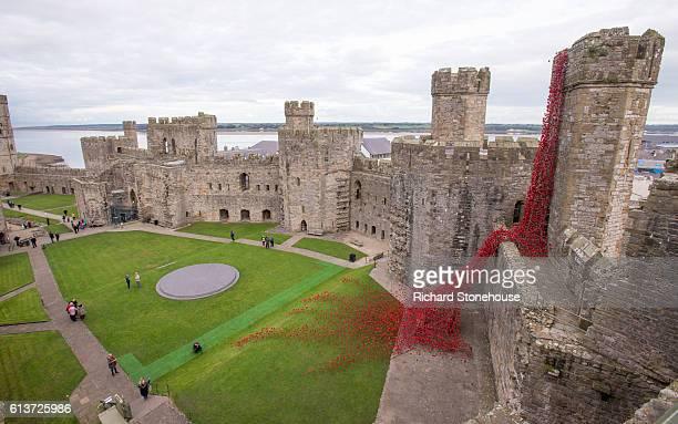 The poppy sculpture Weeping Window opens at Caernarfon Castle as part of a UK-wide tour organised by 14-18 NOW on October 10, 2016 in Caernarfon,...