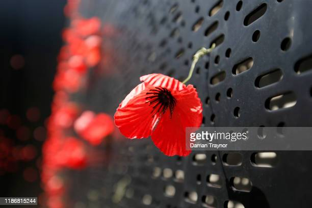 The Poppy wall at the Shrine of Remembrance on November 11, 2019 in Melbourne, Australia. Remembrance Day 2019 marks 101 years since the Armistice...