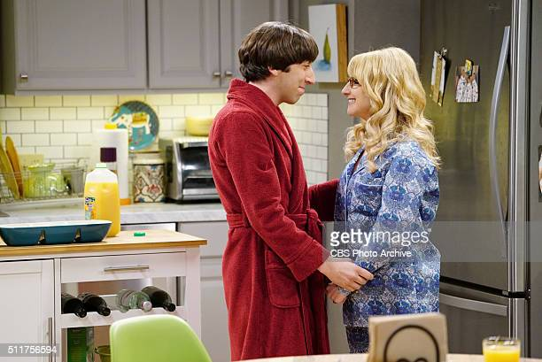 'The Positive Negative Reaction' Bernadette is concerned when Wolowitz freaks out over her pregnancy announcement and Wolowitz is convinced he must...