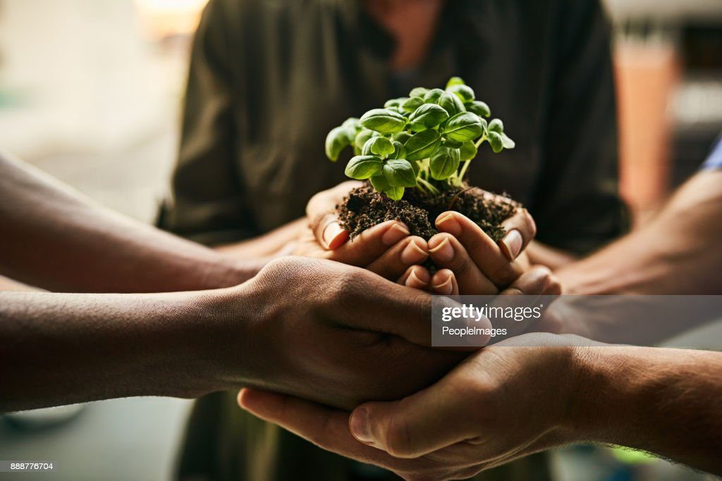 The potential for growth is great when we stand together : Stock Photo