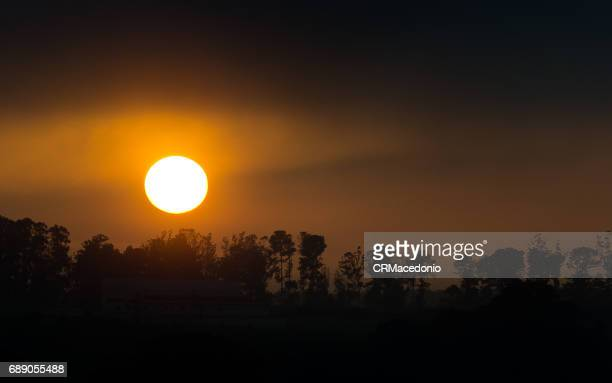 the power and beauty of the sun. - crmacedonio stock photos and pictures