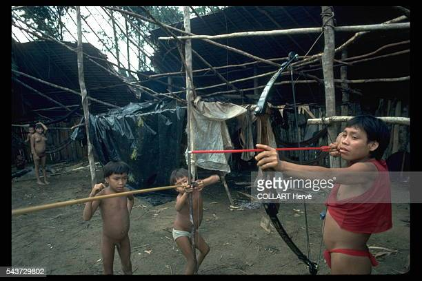 The presence of the gold miners has destructured the Yanomami they cannot be bothered to repair their maloca but use plastic sheeting scrounged from...